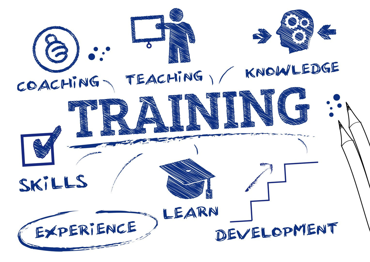 strategic training and development initiatives do you think all companies should support in today s  The association for strategic planning (asp), a us  where do you stand against other high performing organizations  a strategy management group company.